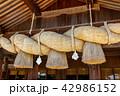 出雲大社 神社 しめ縄の写真 42986152