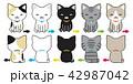 ねこ ネコ 猫のイラスト 42987042
