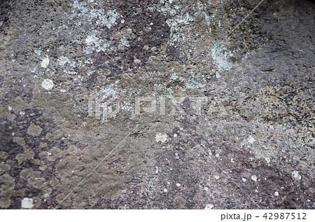 コケが生えた岩の表面 42987512