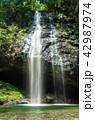 龍頭ヶ滝(りゅうずがたき)雄滝 8月 42987974