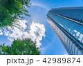 【東京都】都市風景 42989874