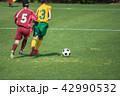 女子サッカー試合風景 42990532