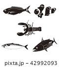 海の生物シルエット 42992093