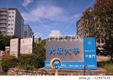 大阪大学吹田キャンパス 42997039