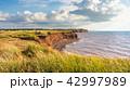 崖 プリンスエドワード島 風景の写真 42997989