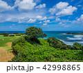 グランドゴルフ発祥の地 潮風の丘とまり 42998865
