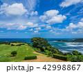 グランドゴルフ発祥の地 潮風の丘とまり 42998867