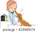 犬を診察する女性獣医師 42998974