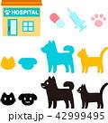 動物病院 動物 猫のイラスト 42999495