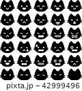 猫 顔 表情のイラスト 42999496