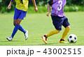 サッカー フットボール 43002515