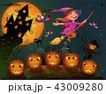 ハロウィン 魔女 おとぎ話のイラスト 43009280