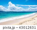 伊江島 ビーチ 海の写真 43012631