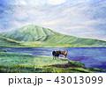 草千里 阿蘇山 水彩画 九州観光  43013099
