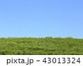 青空 快晴 晴れの写真 43013324