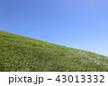 青空 快晴 晴れの写真 43013332