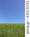 青空 快晴 晴れの写真 43013334