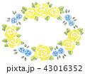 フレーム 枠 薔薇のイラスト 43016352