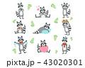 動物 あらいぐま アライグマのイラスト 43020301