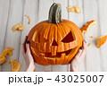 かぼちゃ カボチャ 南瓜の写真 43025007
