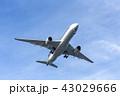 国内線 ターミナル エア エアライン ジャル アナ JAL ANA 格安 機体 ファン 高空 航空 43029666