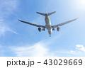国内線 ターミナル エア エアライン ジャル アナ JAL ANA 格安 機体 ファン 高空 航空 43029669