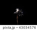 花火 43034576