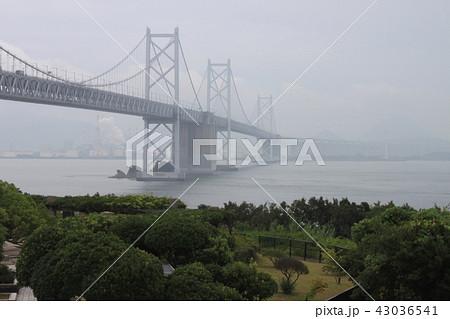 雨の瀬戸大橋 43036541