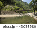 川 渓流 橋の写真 43036980