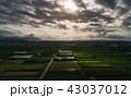 宮崎の風景 43037012