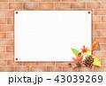 レンガ 秋 松ぼっくりのイラスト 43039269