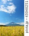 富士山 秋 秋晴れの写真 43040251
