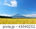 富士山 秋 秋晴れの写真 43040252