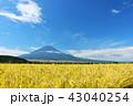 富士山 秋 秋晴れの写真 43040254