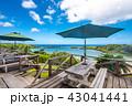 西表島 海 夏の写真 43041441