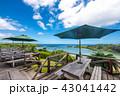 西表島 海 夏の写真 43041442