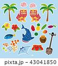 沖縄 観光 名物 素材イラスト 43041850