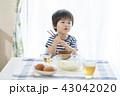 男の子 食事 子供の写真 43042020