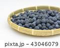 ブルーベリー 果物 実の写真 43046079