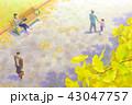 秋イメージ 公園のイチョウと人 43047757