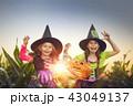 ハロウィン 子 子供の写真 43049137