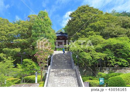 宇都宮二荒山神社 由緒坂 43056165