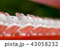 うさぎみくじ~岡崎神社~(京都府-京都市) 43058232