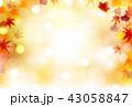 紅葉 もみじ 秋のイラスト 43058847