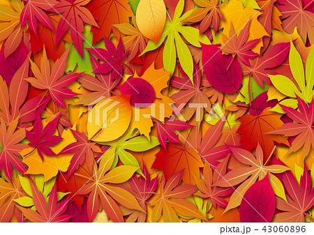 秋 背景 落葉 43060896