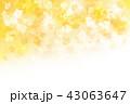 イチョウ 秋 紅葉のイラスト 43063647