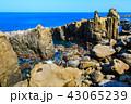 鵜戸千畳敷奇岩 鵜戸神宮 神社の写真 43065239
