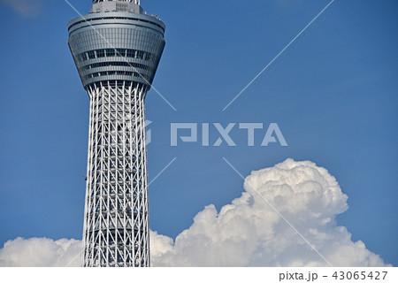 東京スカイツリー 43065427