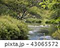 初秋の奥日光湯川 43065572