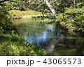 初秋の奥日光湯川 43065573